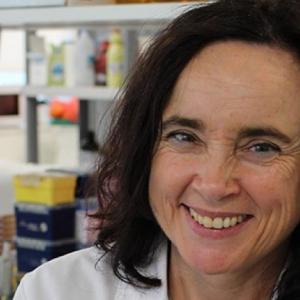 Paula Cristina Maia Teixeira